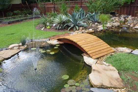 A Home Pond