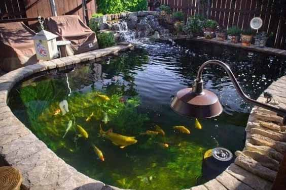 A Waterfall Pond