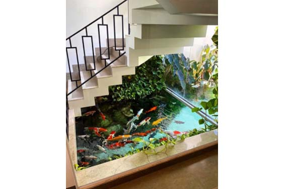 A koi pond at the base of a staircase