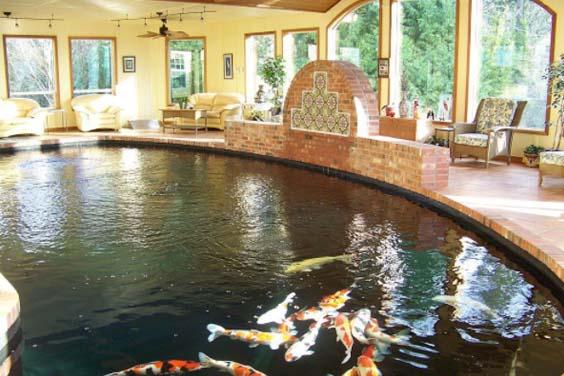 A pond room