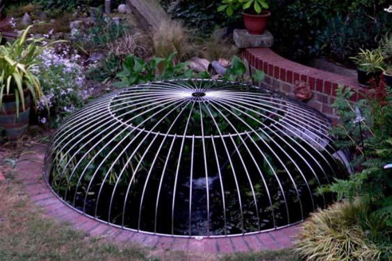 A fish pond with a safety cover