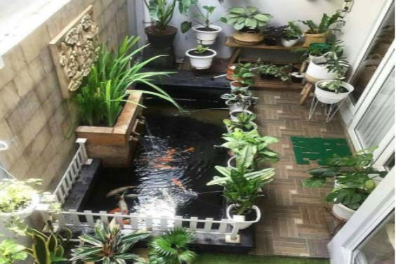 A koi pond at the back porch