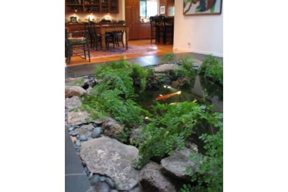 Indoor garden with a fish pond