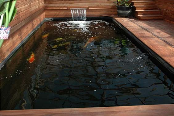 An indoor koi pond in a room with wood paneling