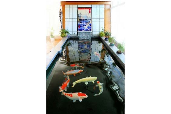 Centrepiece koi pond