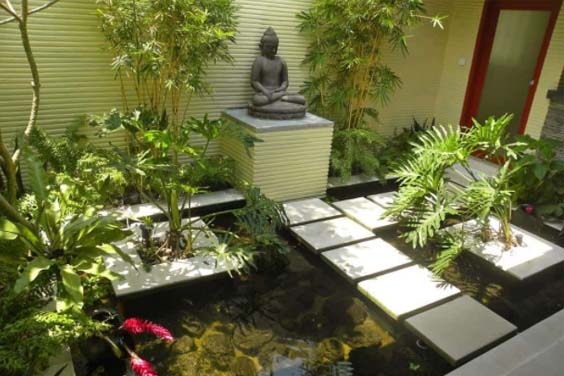 Mediation area koi pond
