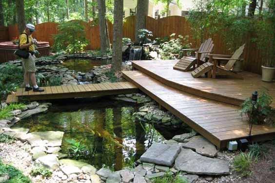 Backyard pond design