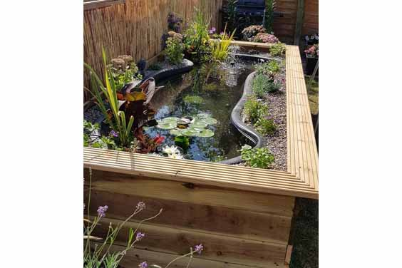 Koi pond design in a backyard