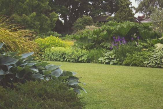 Serene backyard areas make for good pond sites