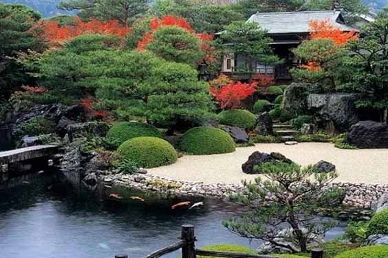 Zen Garden Setup