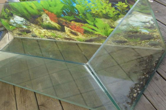 Cleaning a Fish Tank
